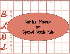 special needs-menu plan