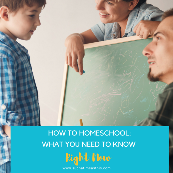 How to Homeschool: What You Need to Know – Right Now