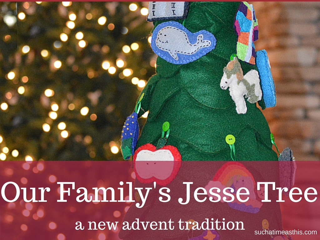 Our Family's Jesse Tree {Review}