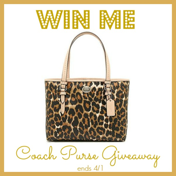 coach purse giveaway (1)