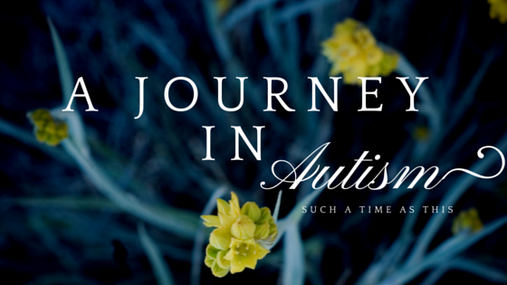 A Journey in Autism {Autism Awareness}