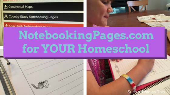 notebookingpages review