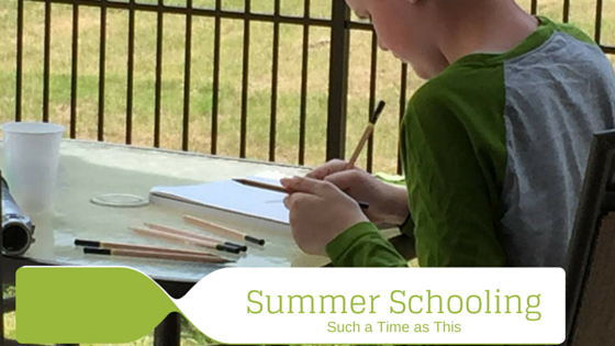 Summer Schooling – What We are Up To {Homeschooling in Summer}