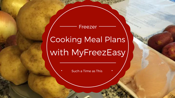 Freezer Cooking Meal Plans {MyFreezEasy Review}