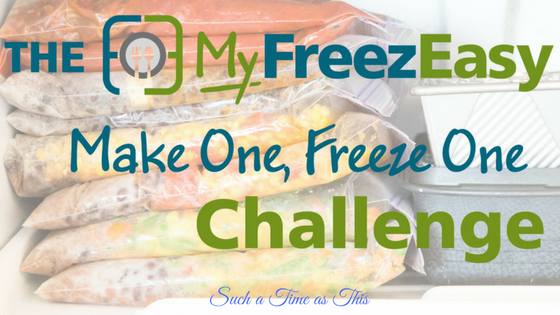 The MyFreezEasy Make One, Freeze One Challenge
