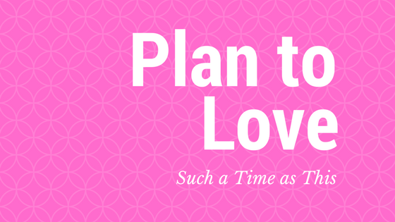 Plan to Love {will you accept the challenge?}