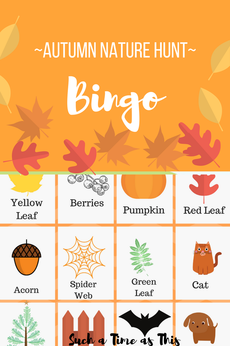 Autumn Nature Hunt Bingo + Free Printable | Such a Time As ...